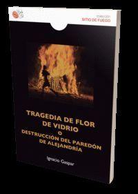 TRAGEDIA DE FLOR DE VIDRIO