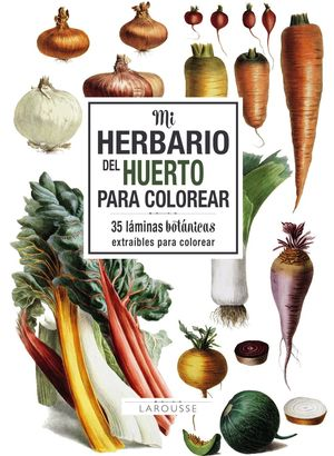 MI HERBARIO DEL HUERTO PARA COLOREAR
