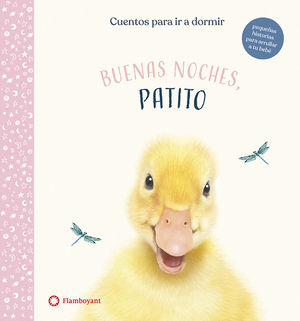 BUENAS NOCHES, PATITO