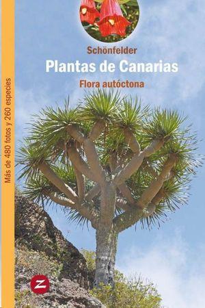 PLANTAS DE CANARIAS (FLORA AUTOCTONA)